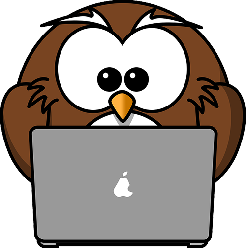 Owl typing on laptop